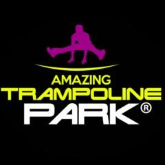 Trampoline Park logo