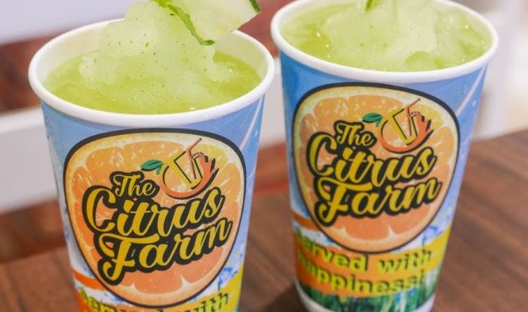 Citrus Farm