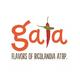Gata - Flavors of Bicolandia atbp.