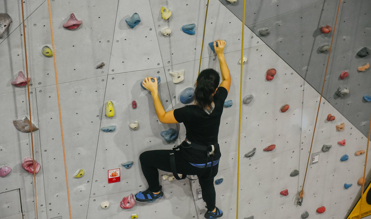 Intro to Climbing for Four