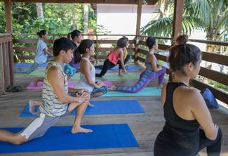 Group Package (10 PERSONS): Eight Basic iYoga* Sessions